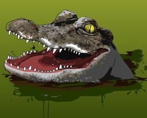 Gator face